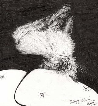Canvas-taulu Sleepy Belina, 2015,