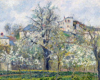 Canvas-taulu The Vegetable Garden with Trees in Blossom, Spring, Pontoise
