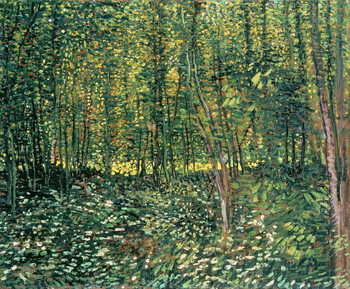 Canvas-taulu Trees and Undergrowth, 1887