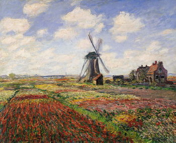 Canvas-taulu Tulip Fields with the Rijnsburg Windmill, 1886