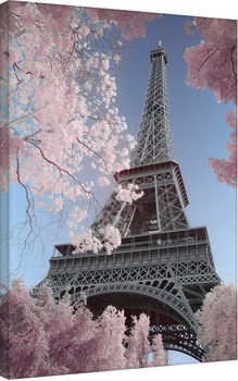 David Clapp - Eiffel Tower Infrared, Paris Canvas-taulu