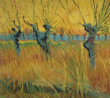 Pollarded Willows and Setting Sun, 1888 Canvas-taulu