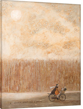 Sam Toft - A Lovely Night for a Drive Canvas-taulu