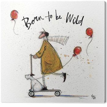 Sam Toft - Born to be Wild Canvas-taulu
