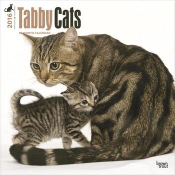 Calendar 2021 Cats 3