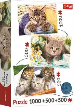 Palapeli Cats Pleasure 3in1