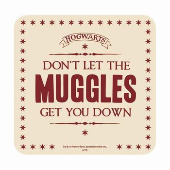 Harry Potter - Muggles Coaster