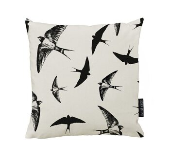 Cushion Swallow Bird