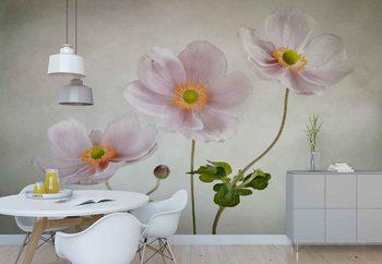Papel de parede Anemones