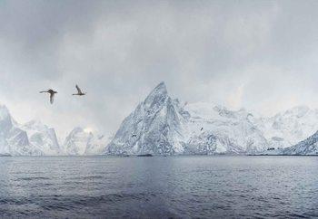 Papel de parede Arctic Flight