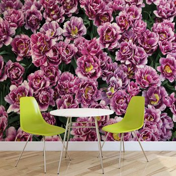 Papel de parede Blossomed Flowers Purple