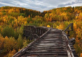 Papel de parede Bridge To Nowhere