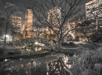 Decoração de parede Central Park - Bridge