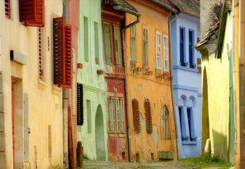 Papel de parede Colors