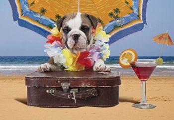 Papel de parede Dog Holiday