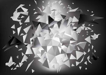 Papel de parede Explosion Birds Abstract