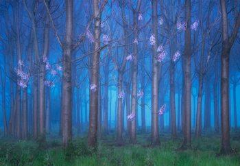 Papel de parede Fairyland