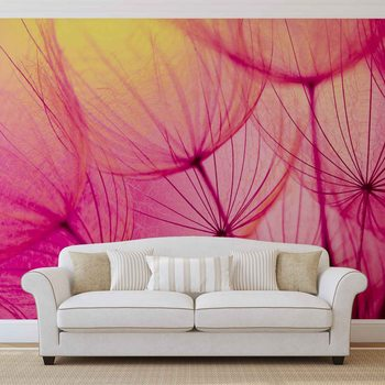 Papel de parede Flower Dandelion