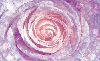 Papel de parede Flowers Rose Nature