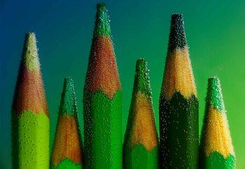 Papel de parede Green
