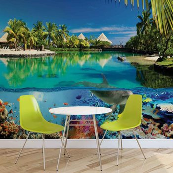 Papel de parede Island Paradise With Corals Dolphin