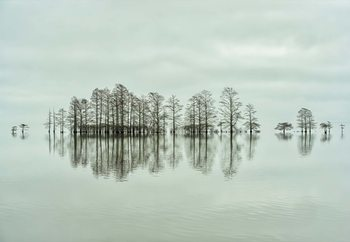 Papel de parede Lake-Shore Lineup Beauty