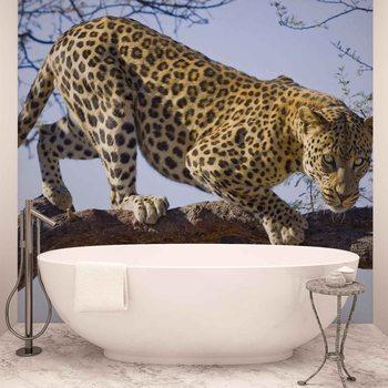 Papel de parede Leopard Tree