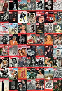 Decoração de parede LIFE photos