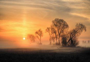 Papel de parede Misty Sunset