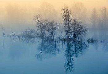 Papel de parede Morning Reflection