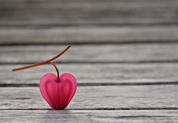 Papel de parede Natural Heart