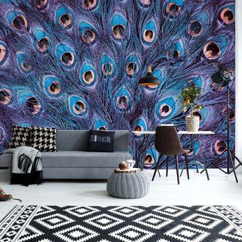 Papel de parede Peacock Feathers Blue And Purple