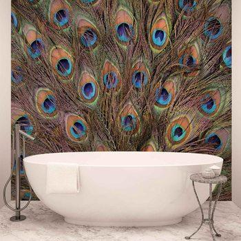 Papel de parede  Peacock Feathers