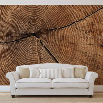 Murais de parede Pierścienie drzewa