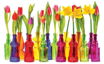 Papel de parede Tulips in Bottles