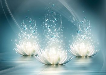 Papel de parede  White Lotus Flowers Drops