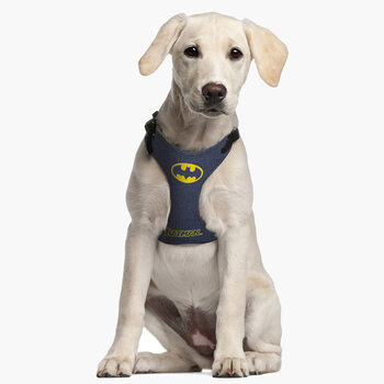 Dog harness Batman