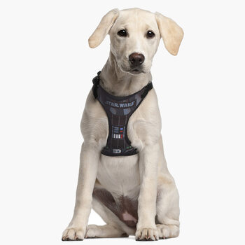 Dog harness Star Wars - Darth Vader