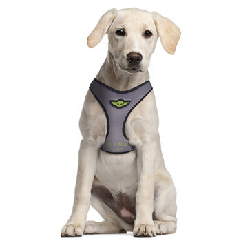 Dog harness Star Wars: The Mandalorian