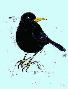 Blackbird,2008 Taidejuliste