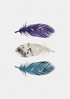 Kuva Blue Purple White Feathers