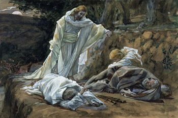 Could Ye Not Watch with Me One Hour?, illustration for 'The Life of Christ', c.1886-94 Taidejuliste