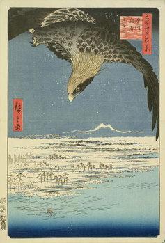 Eagle Over 100,000 Acre Plain at Susaki, Fukagawa ('Juman-tsubo'), from the series '100 Views of Edo' ('Meisho Edo hyakkei'), pub. by Uoya Eikichi, 1857, (colour woodblock print) Taidejuliste
