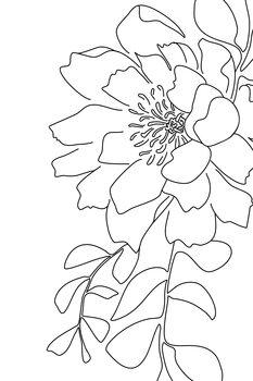 Kuva Floral line art