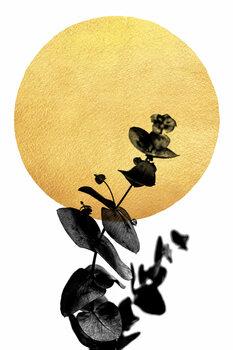 Kuva La Vie En Rose
