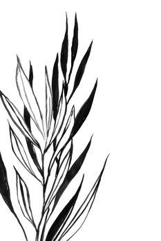 Kuva Leaves line art