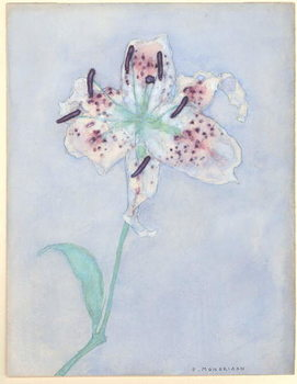 Lily, after 1921 Taidejuliste