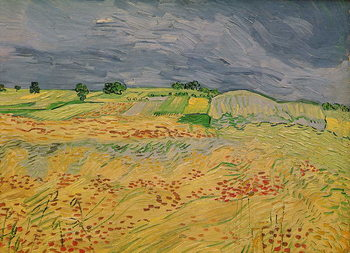 Plain at Auvers, 1890 Taidejuliste