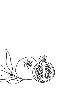 Kuva Pomegranate line art