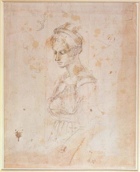 W.41 Sketch of a woman Taidejuliste